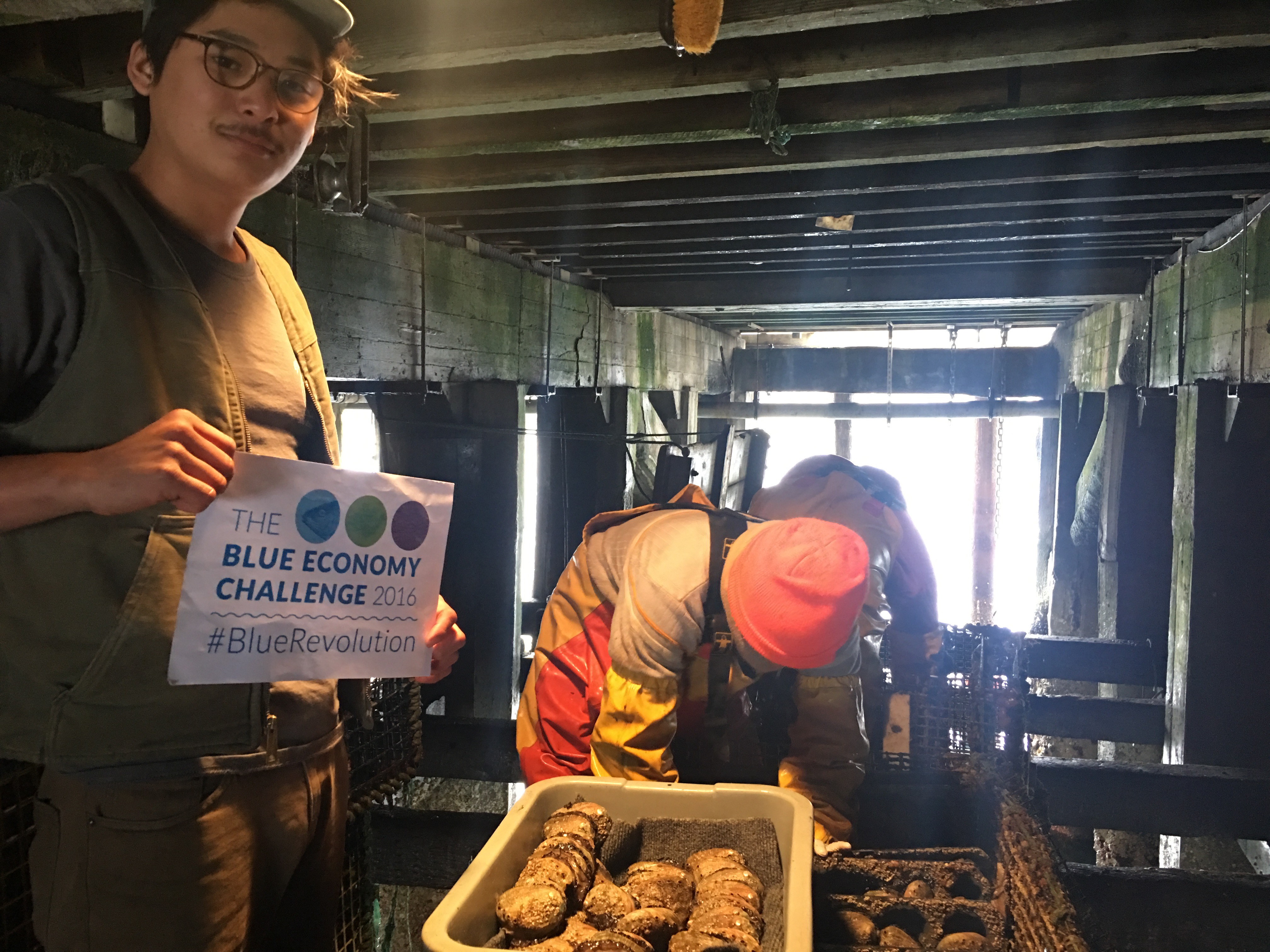 Sustainable Aquaculture: Farming Abalone and Kelp in California!