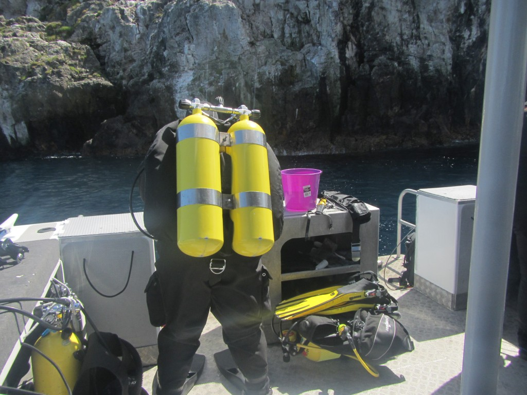 Preparing for another dive on the Poor Knights Marine Reserve, an ideal model for marine permaculture off the north island of New Zealand.