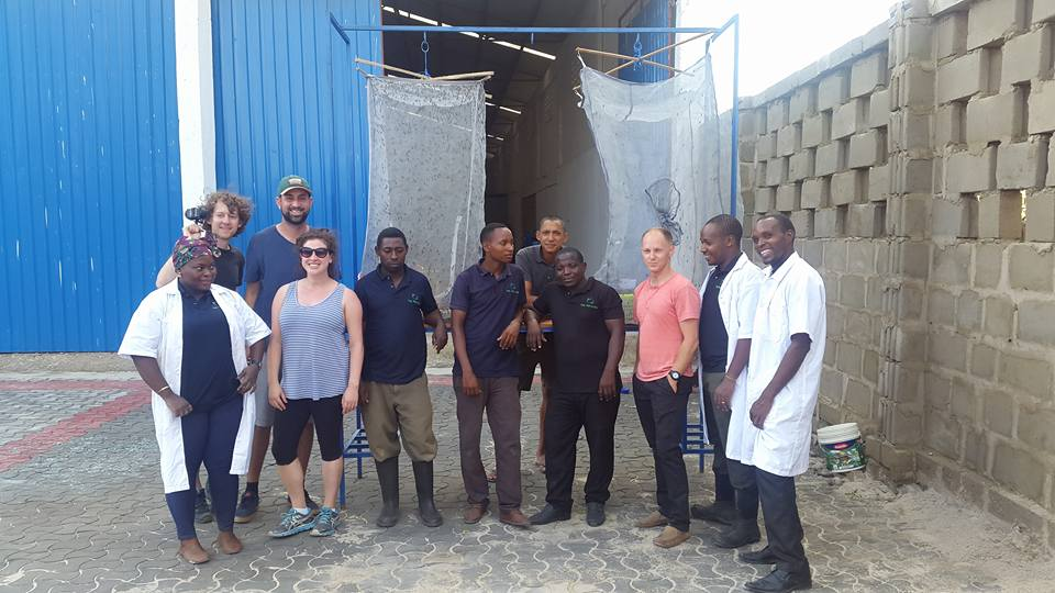 This week, the Australian Government visited The Recycler in Tanzania – one of ten Australian Government Department of Foreign Affairs and Trade Blue Economy Challenge winners. The Recycler is breeding fly larvae to create a more sustainable type of fish feed.