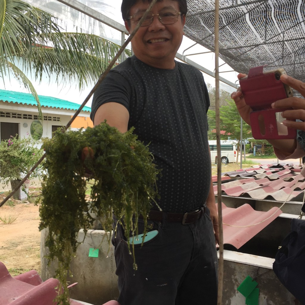 Local microbiologist helps rural farmers with hydroponics and aquaculture.